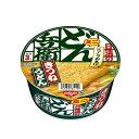 日清食品 どん兵衛きつねうどん ミニ 42g ×12個 【送料無料】