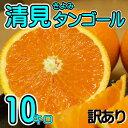 【訳あり】/愛媛県産 清見タンゴール 約10kg/(清見オレンジ) 【送料無料】【みかん ミカン 蜜