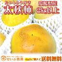 【茶箱】愛媛県産 太秋柿 約2kg以上【4kg分購入で送料無料】