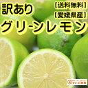 【訳あり】/愛媛県産 グリーンレモン 約5kg/(れもん)【ワックス・防腐剤不使用】【全国送料無料】 ランキングお取り寄せ