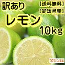 【訳あり】国産 レモン 約10kg/愛媛県産(れもん)【ワックス・防腐剤不使用】