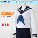 長袖セーラー服 大きいサイズ 白 紺エリ 上着 合服 日