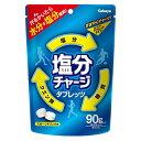 塩分チャージタブレッツ スポーツドリンク味 90g【3990円以上送料無料】