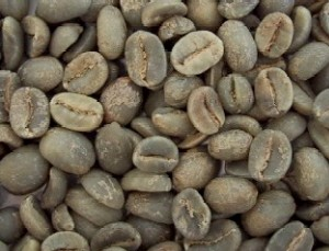 コーヒー コロンビア オーガニック ポイント