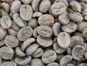 コーヒー グァテマラ オーガニック ポイント