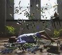 ☆春の特別企画☆エントリーで当店全品ポイント5倍!【送料無料】【Soft Fall】 b008rco50e