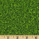 【Kaufman Sports Life Grass Turf Grass Fabric by Robert Kaufman】 b00kj0e41m