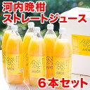 【送料無料】河内晩柑ストレートジュース 6本セット 愛媛県愛南町産【贅沢な果汁100%】