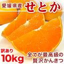 【送料無料】訳あり せとか 10kg 愛媛県産【幻の柑橘】