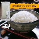 令和2年新米 送料無料 熊本のおいしいお米 コシヒカリ 300g×1 ポイント消費 2合 お試し 熊本県産100%