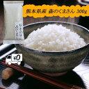 送料無料 熊本のおいしいお米 森のくまさん 300g×1 ポイント消費 2合 お試し 令和元年 熊本県産100%