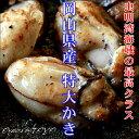 岡山県産 特大かき 超希少3L 1Kg (解凍後800g/25粒前後) 牡蠣 むき身 冷凍 カキ かき 無添加食品 高級 ギフト お取り寄せ おつまみ 2個〜 送料無料 ※冷凍保存2ヶ月以上