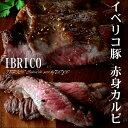 イベリコ豚カルビ 希少部位カベセロ 最高峰の赤身カルビ 約750g (約250g3枚入り) イベ