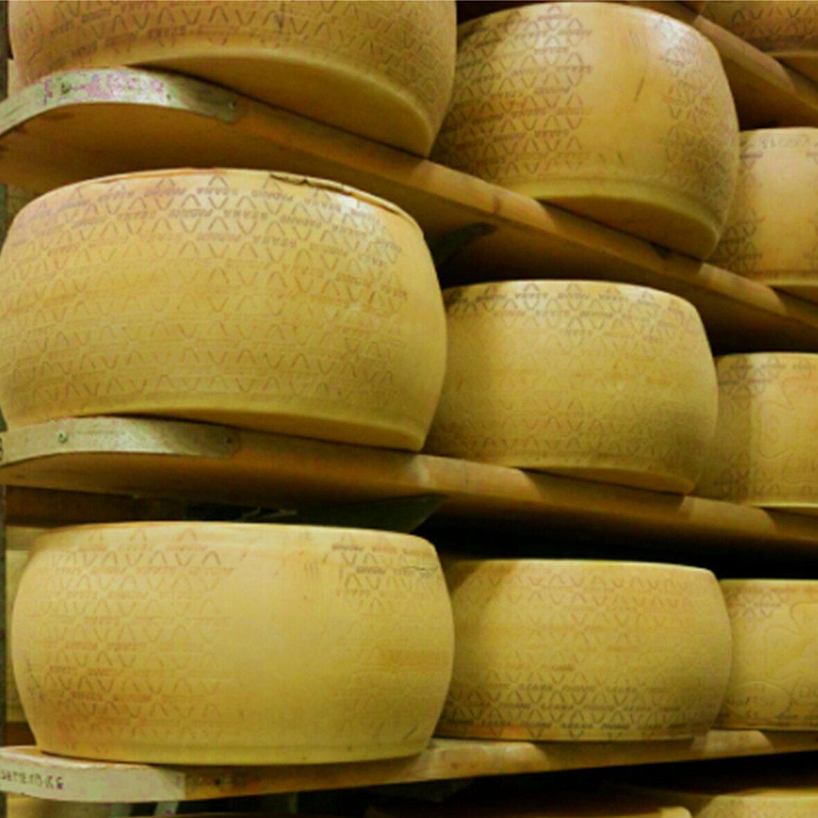 グラナパダーノ チーズ DOP 1kg パウダーの紹介画像3