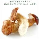 【無添加食品】イタリア産 ポルチーニ茸 約1kg お取り寄せ【10P23Apr16】