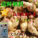 【送料無料】高知産露地新生姜 家庭用 約4Kg ただし北海道沖縄は送料500円のご負担お願いします。