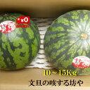 高知産大玉すいか2玉入り 家庭用 ただし北海道沖縄は、送料800円のご負担お願いします。6月中旬ごろより順次発送いたします。