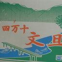 【送料無料】高知産隔離栽培マスクメロン9Kg〜10Kg 北海道沖縄は送料800円(100サイズまで)のご負担お願いします。