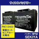 太陽光・再生エネルギーに 蓄電用バッテリー PNC12400 【SC38-12 適合】