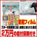ノムラテック 透明ガラス専用防犯フィルム360 420×29...