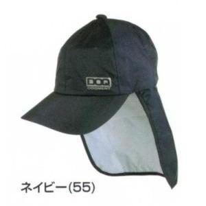 【レインキャップ C-1】