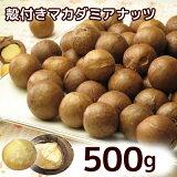 殻付きロースト マカダミアナッツ 500g 【あす楽対応】