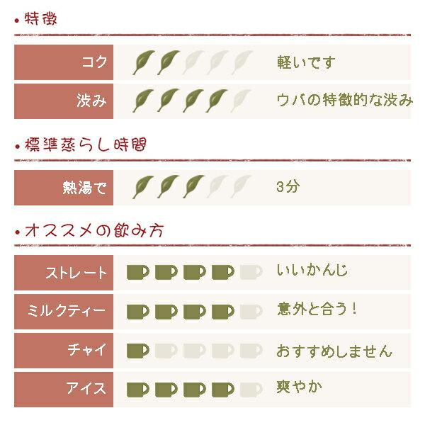 フレーバー紅茶 シャンパン 500g 【あす楽対応】の紹介画像2