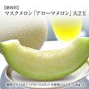 【特撰】静岡 マスクメロン 「アローマメロン(磐田メロン)」2玉入り(1玉1.4kg)