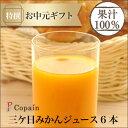 【静岡三ヶ日】三ケ日みかんジュース ストレート「あおしま」180ml 6本