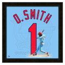 お取り寄せ MLB カージナルス オジー・スミス フォト ファイル/Photo File UNIFRAME 20 x 20 Framed Photographic