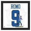 お取り寄せ NFL カウボーイズ トニー・ロモ フォト ファイル/Photo File UNIFRAME 20 x 20 Framed Photographic