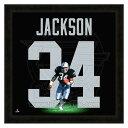 お取り寄せ NFL レイダース ボー・ジャクソン フォト ファイル/Photo File UNIFRAME 20 x 20 Framed Photographic