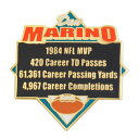 NFL ドルフィンズ ダン・マリーノ レコーズ ピンバッジ PSG