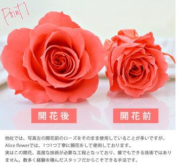 【ガラスドームプリザーブドフラワー・ALICEFLOWER】ローズバラプリザーブドアレンジ花【フラワーギフト】