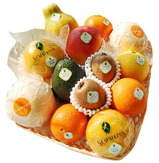 Senbiki Shop Home Office (せんびきや) seasonal fruits refill case (3)