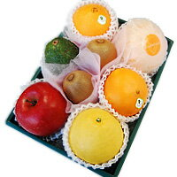 Senbiki Shop Home Office (せんびきや) seasonal fruits refill case (1)