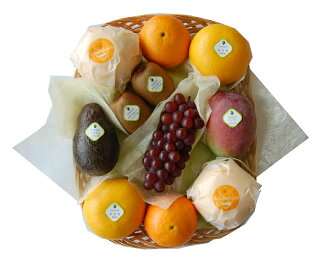 Senbiki Shop Home Office (sennbikiya) seasonal fruits refill case (3)