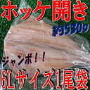 ◆ジャンボ◆縞ホッケ開き約530g(1尾入)【05P03Dec16】