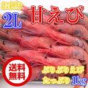 ◆送料無料◆甘エビ2Lお刺身用1kgプリプリ【05P03Dec16】