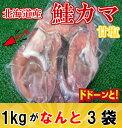 ◆訳あり◆天然北海道産◆甘塩鮭カマ肉1kg+なんとおまけで2kg合計3kg【05P03Dec16】