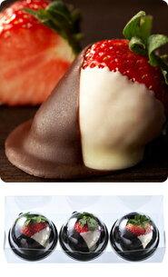 バレンタイン チョコレート ショコラ フレーズ