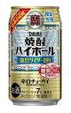 【2020年5月19日限定発売】タカラ 焼酎ハイボール 最強の炭酸〈強烈サイダー割り〉350mlx1ケース(24本)【期間限定】