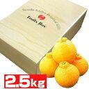 熊本産 デコポン2.5kg【送料無料】【果物ギフト】【ギフト...