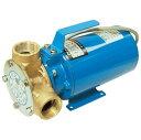 セレックスポンプ 雑用水ポンプ SPM-140-5 マリンエース モーター直結 DC24V 400W 口径:11/4