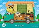 とびだせ どうぶつの森 amiibo+ 08 ハリマオ【中古】 【任天堂】【Nintendo】