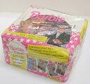 【未開封】バービー&フレンズ! Barbie and Friends! トレーディングカードBOX Panini【中古】