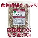 【メール便送料無料】四国産もち麦 300g 雑穀 水溶性食物繊維 もちむぎ