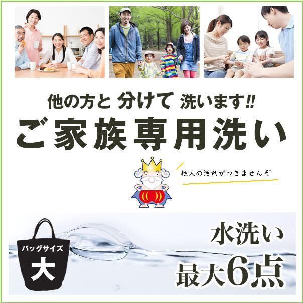 【ポイント5倍 3月20日17:00〜】クリーニング宅配らくらくパック水洗いバイオ6点【送料無料 関東地方】