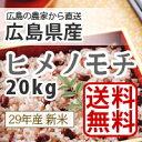 【送料無料】28年産広島県産新米ヒメノモチ20kg精米(白米)*北海道・沖縄別途送料500円が掛かります