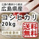 【送料無料】【新米】【広島県産】28年産広島県産新米コシヒカリ20kg精米(白米)生産農家が販売するお米[注文を受けてから精米します]